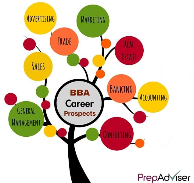 BBA Career Prospects